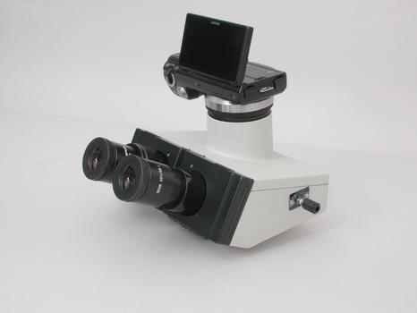 Olympus Trinocular BH-2 Head w/ Sony DSLR